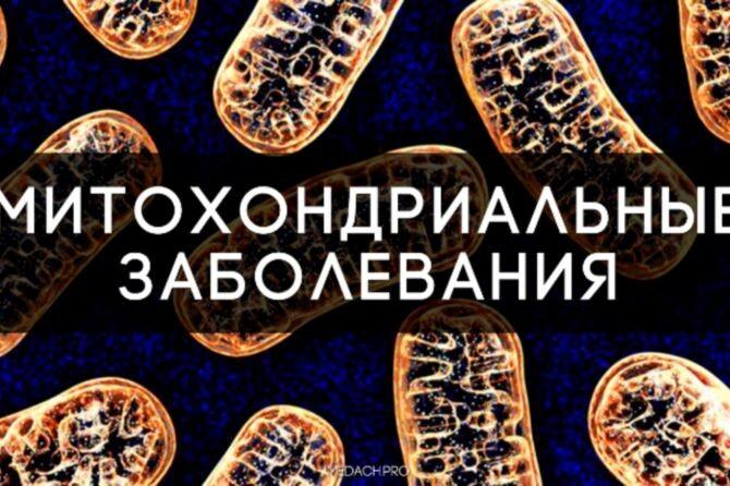 image_145535245571531366820117-670x446