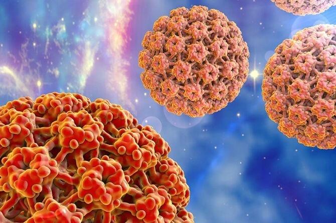 virus-papillomy-cheloveka-670x445
